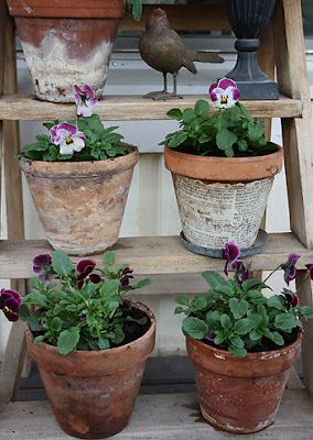 I like the pots of pansies on a stepladder (?)