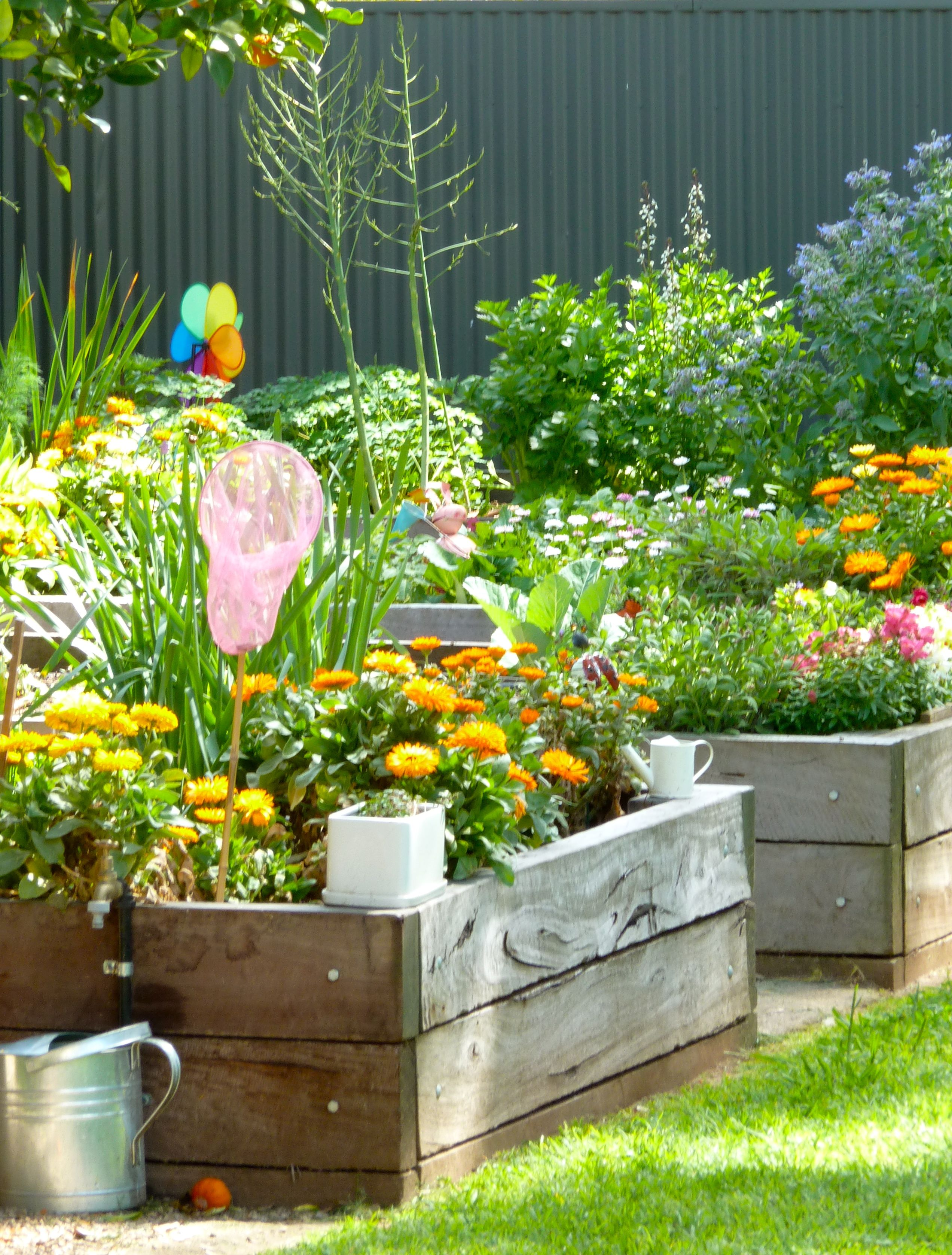 I'm thinking a vegie patch like this in front of the cubby