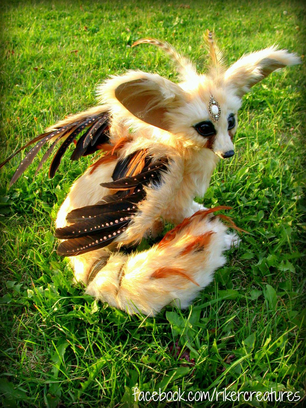 Flighted Fennec Fox - Close-up by RikerCreatures.deviantart.com on @DeviantArt