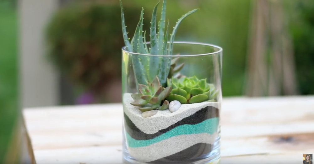 Indoor Gardening Gifts With just a few layers of sand you wont believe what she planted looking for a cute indoor garden option try this layered sand succulent planter workwithnaturefo