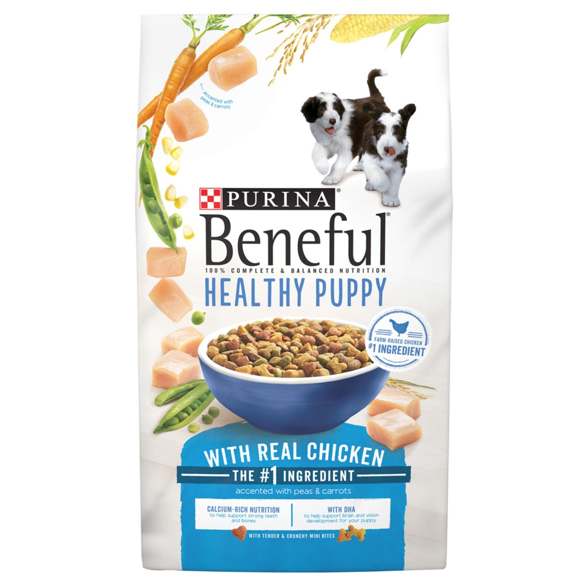 Purina Beneful Healthy Puppy Dry Dog Food 15 5lbs Products