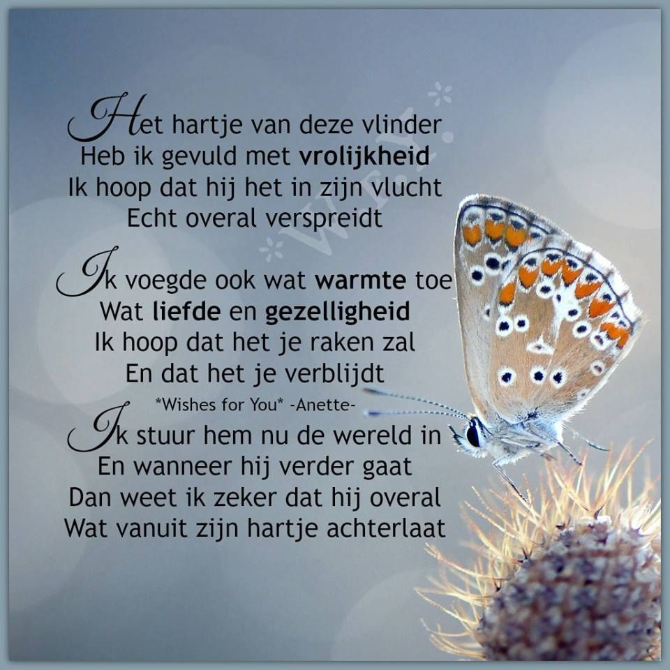 Magnifiek Het hartje van deze vlinder | Teksten | Pinterest - Poems, Quotes &RH41