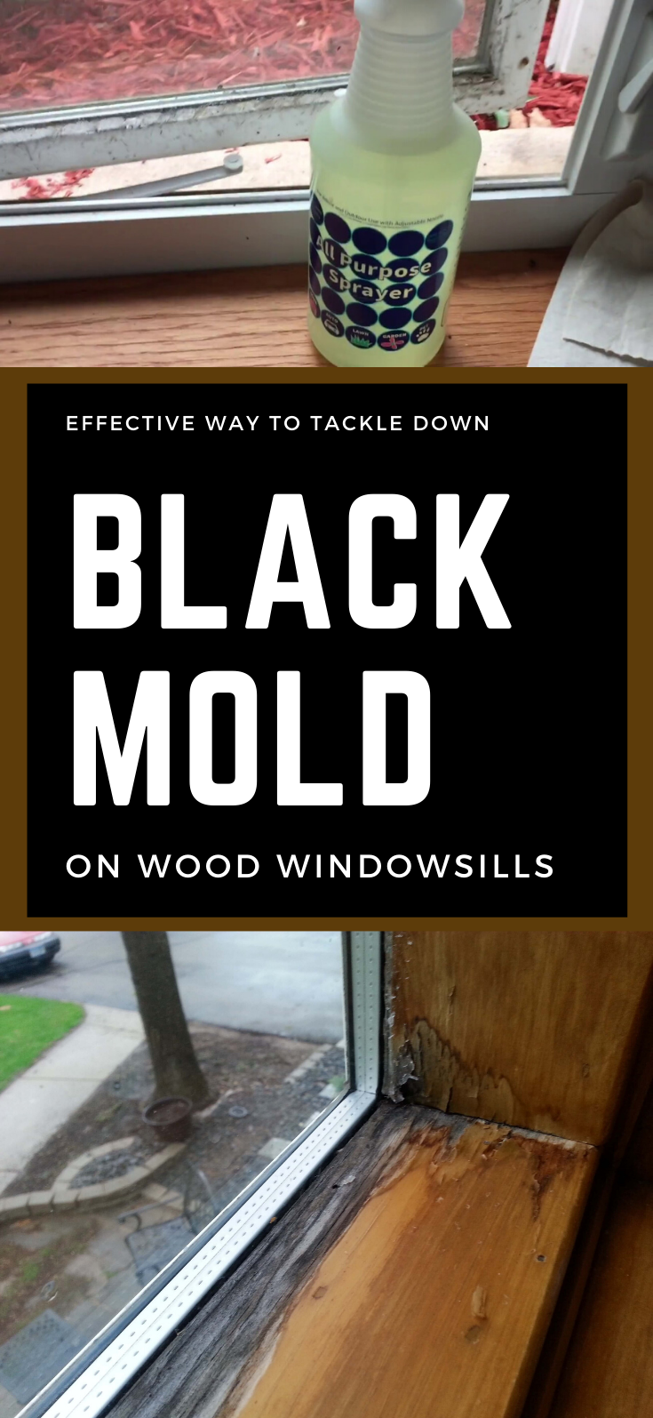 Effective Way To Tackle Down Black Mold On Wood Windowsills In 2020 Cleaning Mold Cleaning Wood Window Sill