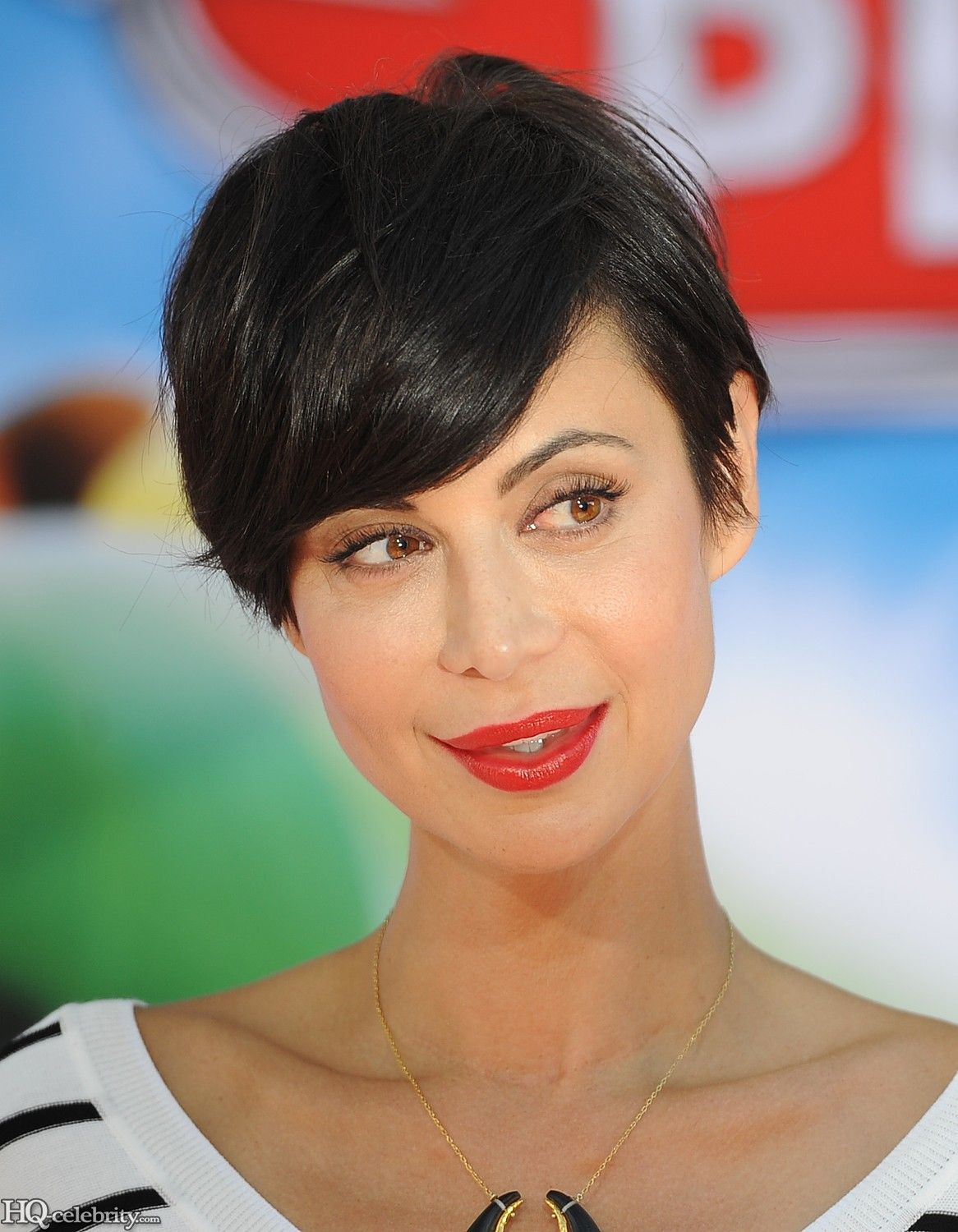 Catherine Bell Short Haircut : catherine, short, haircut, Catherine, Pixie., Could, Short, Bell,, Styles,, Styles