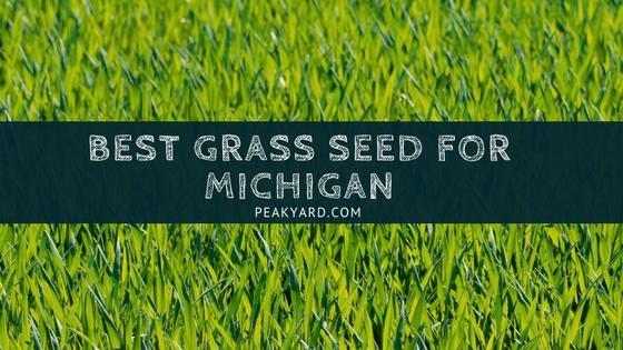 Best Grass Seed For Michigan Yards Peak Yard Best Grass Seed Grass Seed Planting Grass