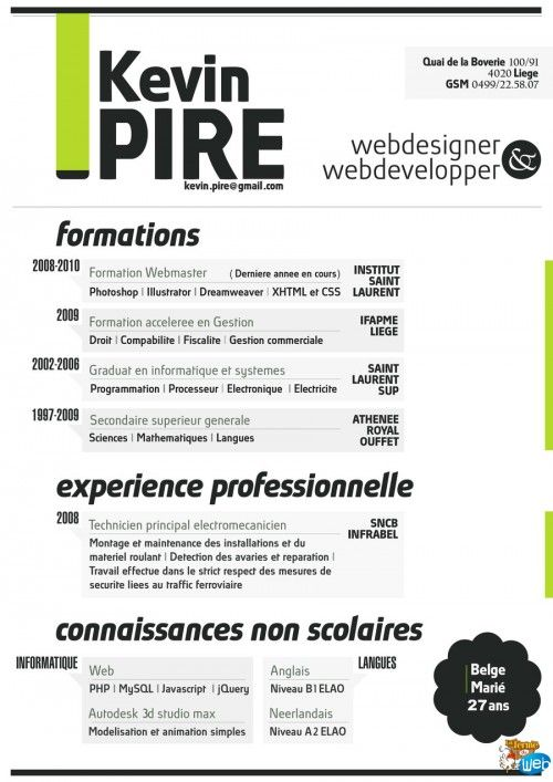 Free Resume CV Templates Curriculum Vitae Pinterest Resume - web developer resume samples