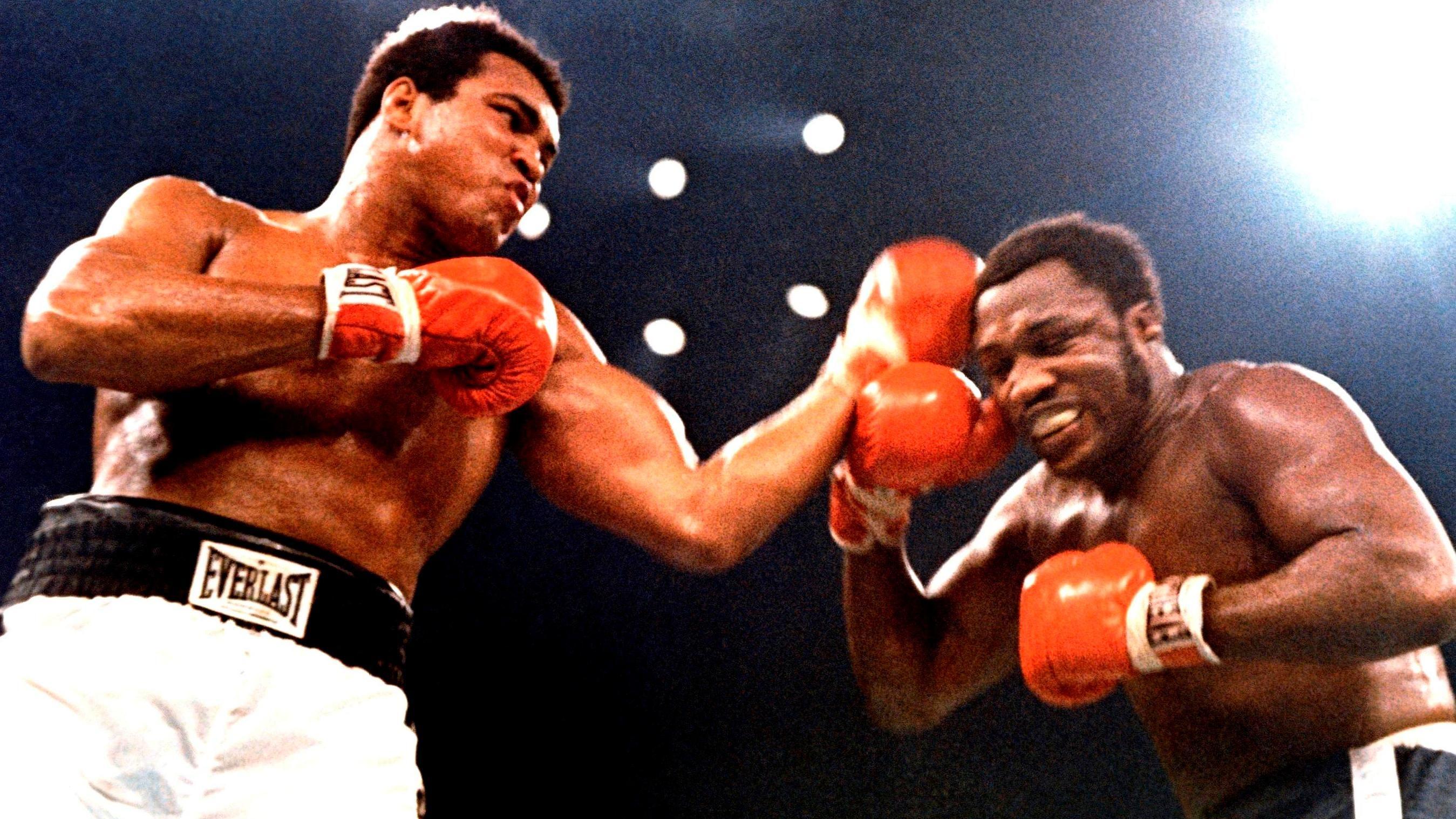 Pin On Ali