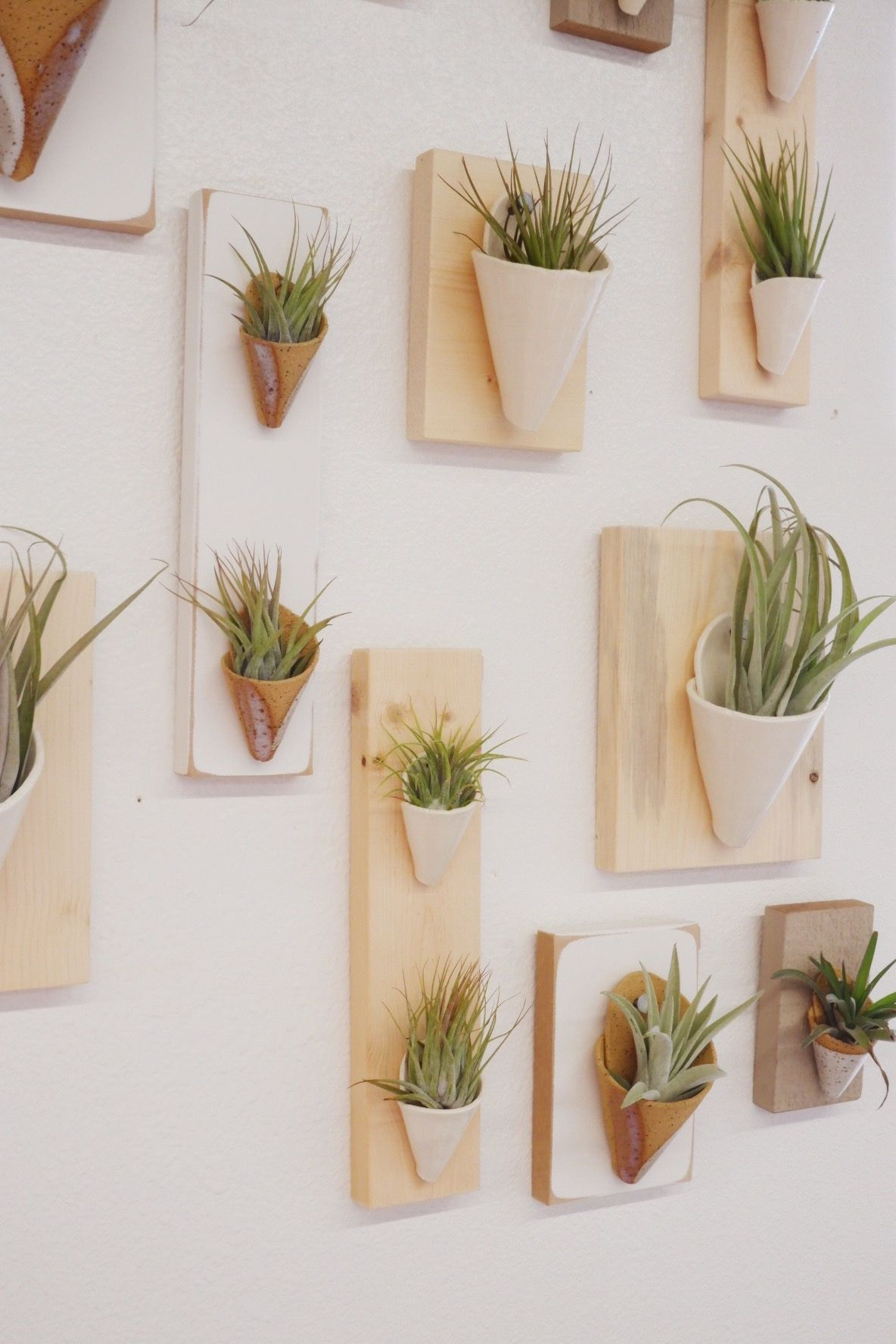 These Make The Perfect Little Home For Your Air Plants Made By Carterandrosepdx From Portland Or Peejoys Giftsforher Livethelittlethings
