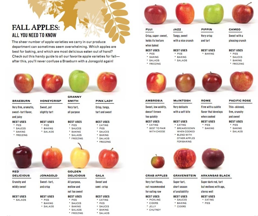 Fall Apples Cooking Charts Apple recipes, Apple