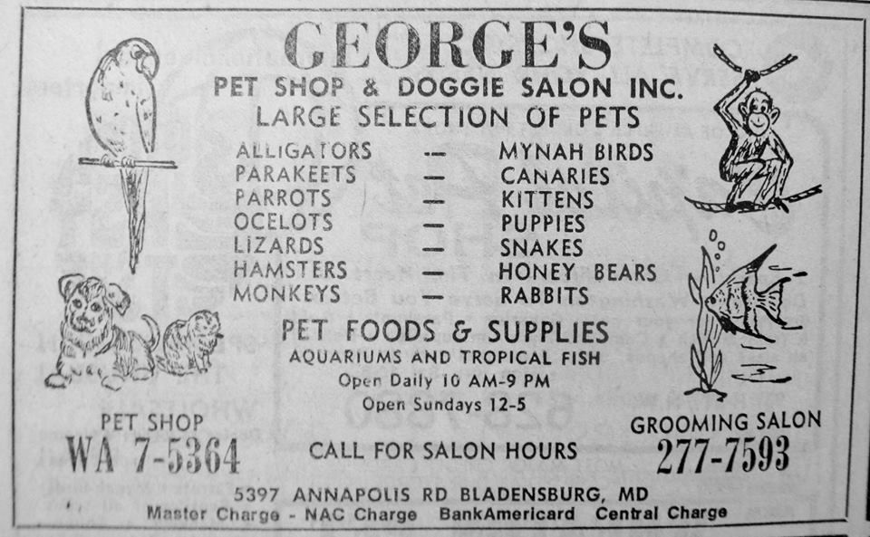 Here We Go The Famed Georges Pet Shop In Pg County Md