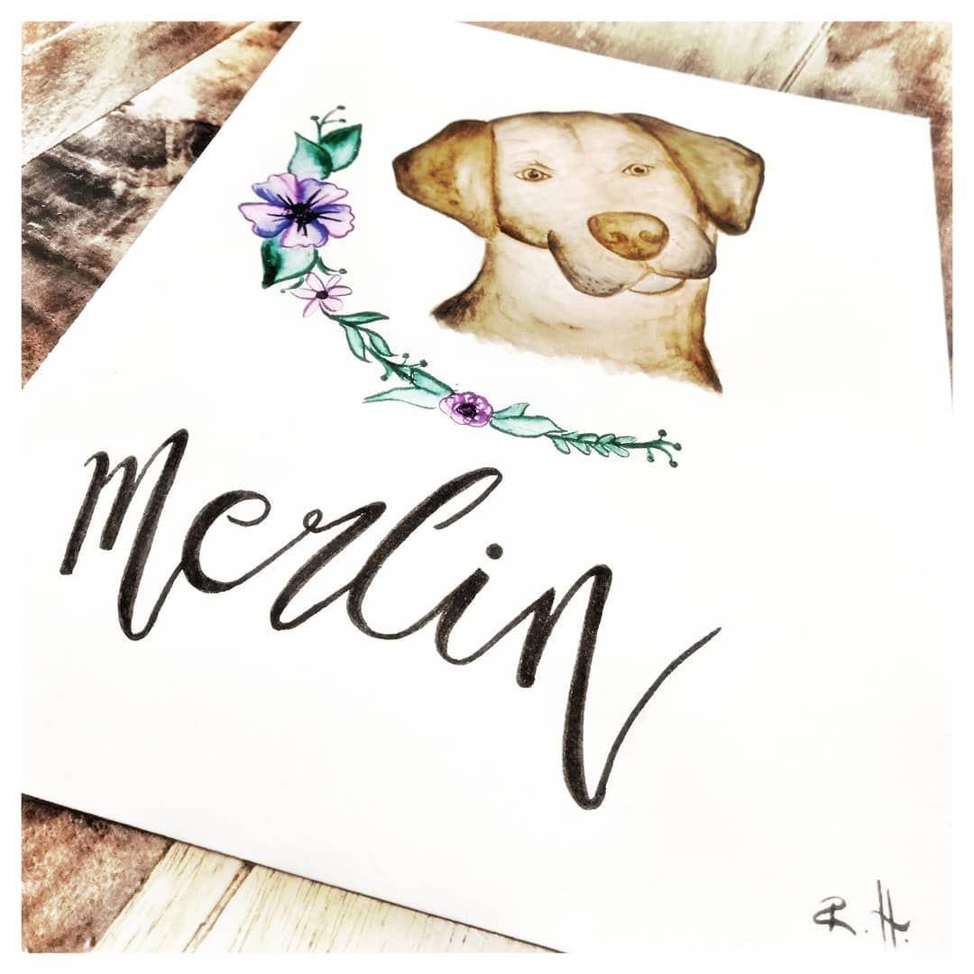 Frauleinrosiswelt On Instagram Handlettering Zeichnen Art