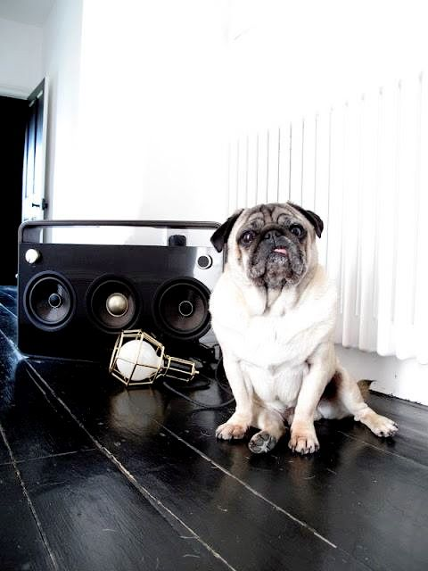 IN TALKS WITH A VERY TALENTED LOCAL DJ!   WITH REF TO A DOWNLOADABLE PODCAST/SOUNDTRACK FOR THE ONLINE STORE...  ONLINE STORE OPENING SOON www.47parkavenue.co.uk