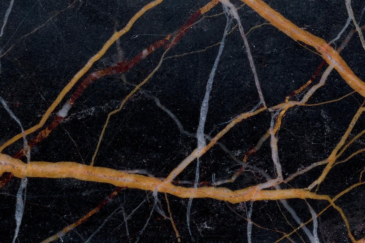 Black And Gold Italian Marble Granite