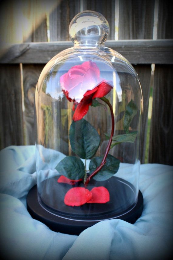 Beauty Beast Enchanted Rose Dome Life Size Prop Replica Wedding