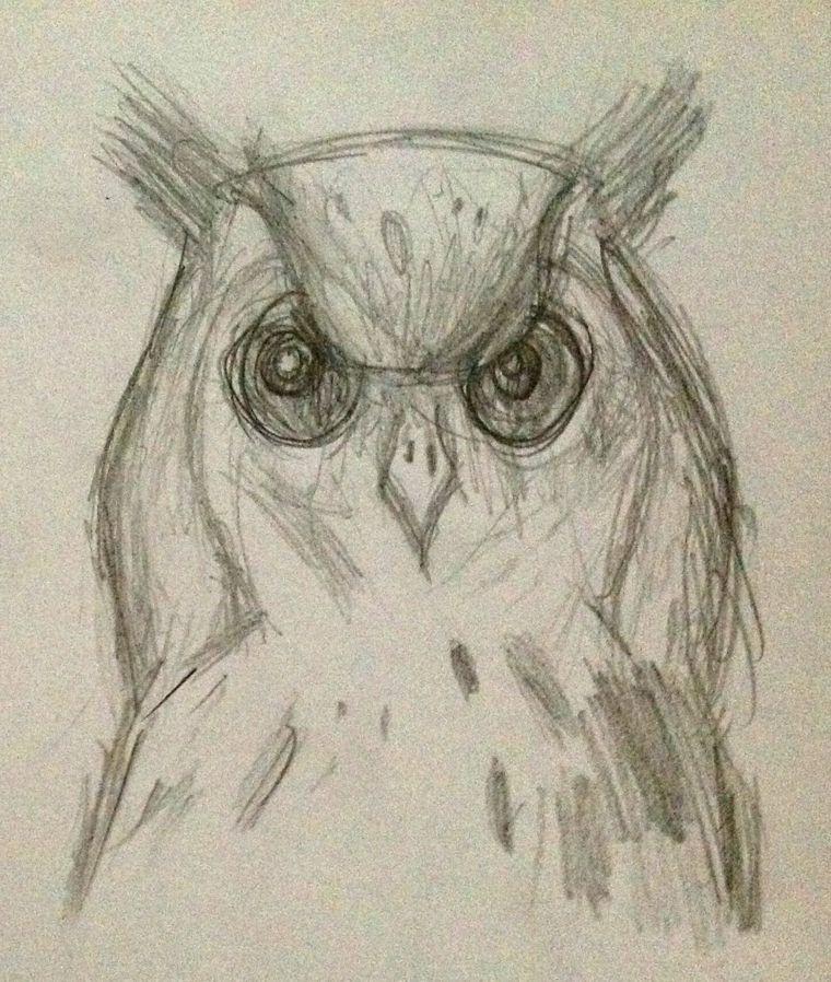 Disegni facili da copiare matita primo piano civetta occhi for Disegni del mazzo del secondo piano