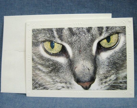 Photo Greeting Card Blank Inside Featuring Up di SewBizzyGifts, $3.50