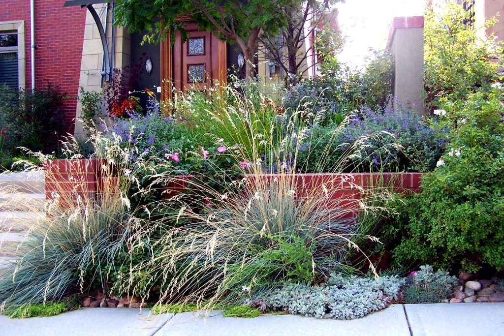 Ornamental Grasses Landscaping October 4th, 2012 No Comments
