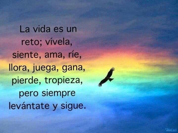 Quotes En Español De La Vida: Frases De La Vida