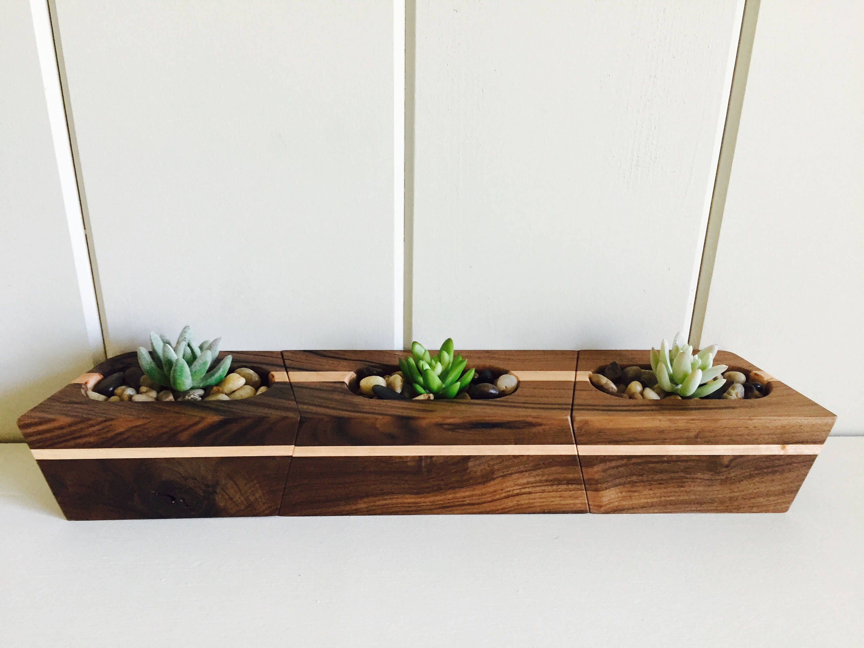 Wood Planters, Succulent Planters, Air Plant Display, Room Dimensions, Rough