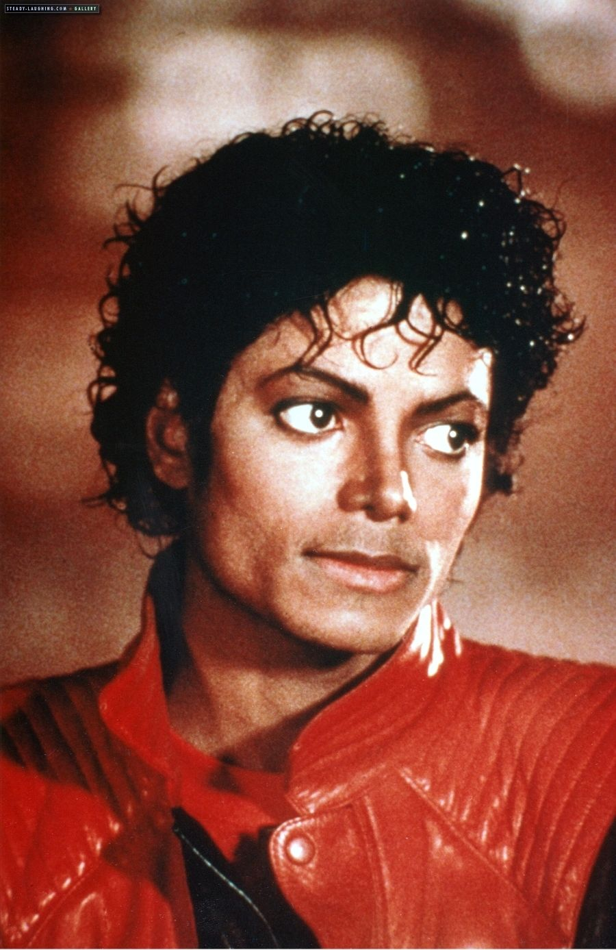 Michael Jackson Thriller Wallpaper Wallpapersafari