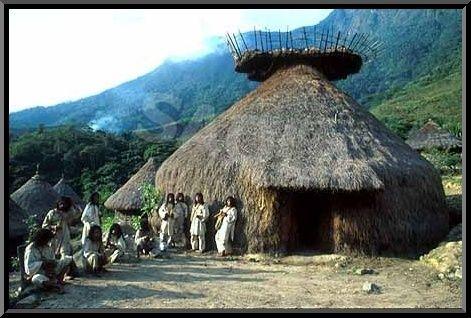 Groovy Yanomami Shabono Communal Dwelling Dwellings Amazon Download Free Architecture Designs Itiscsunscenecom
