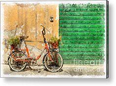 Lucca Italy Bike Watercolor Metal Print by Edward Fielding