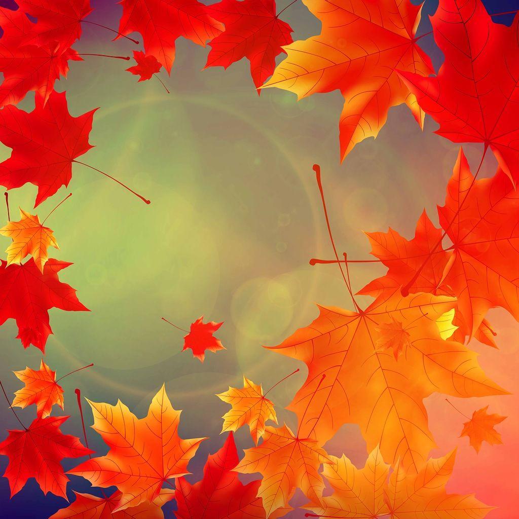 Спасибо осень картинки