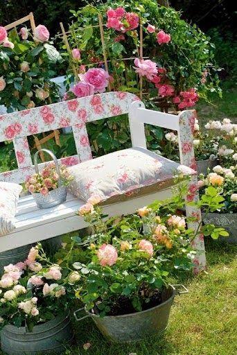 Shabby flower bench and rose garden