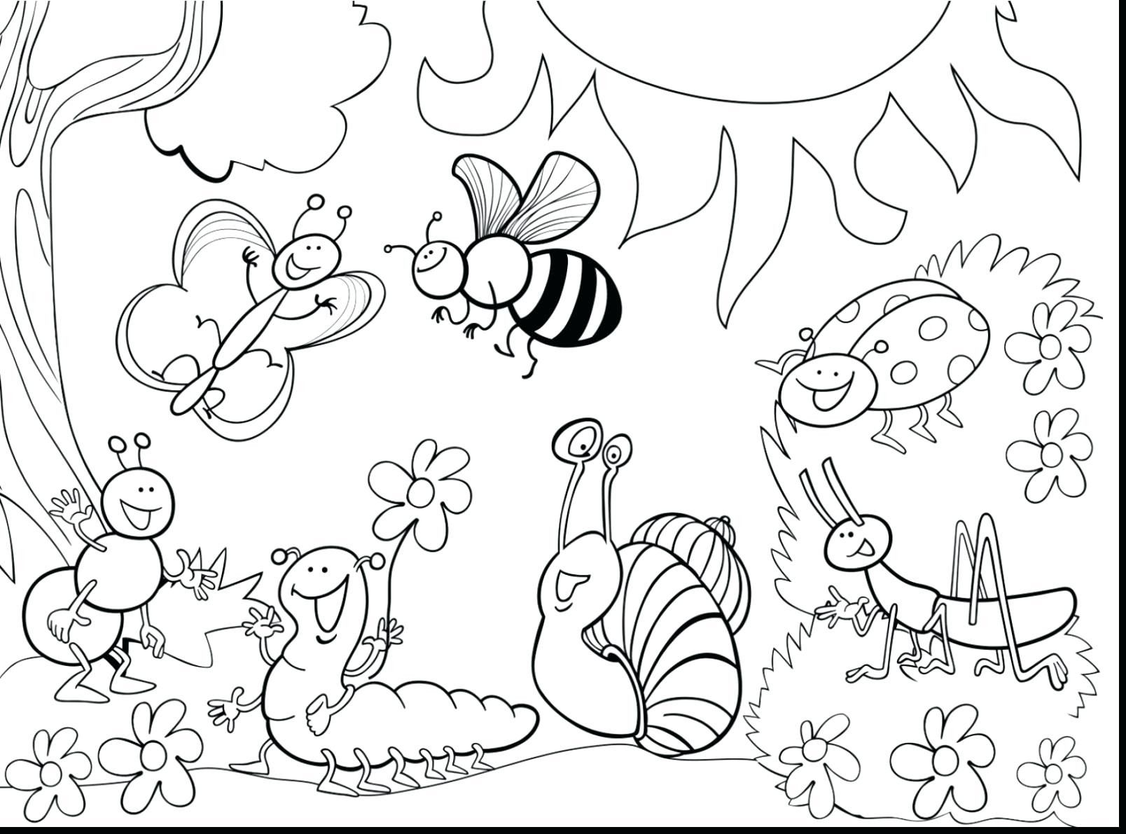 Bug Coloring Pages Bugs Print Download Licorice Page