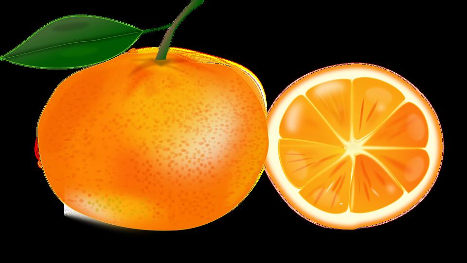 unduh 730 gambar es jeruk vektor terbaik jus jeruk jeruk buah pinterest