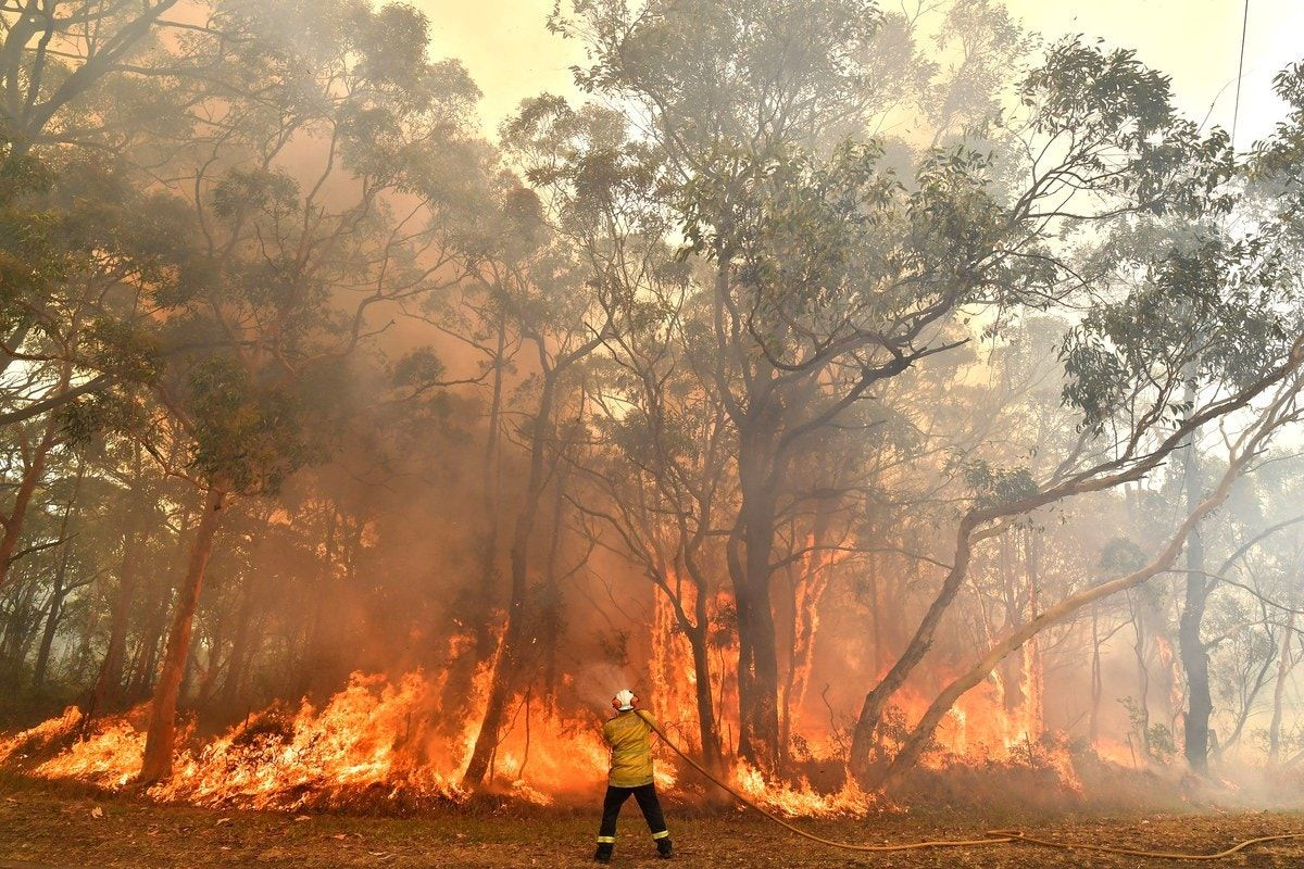What You Can Do to Help During the Australia Bushfires in