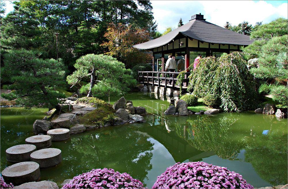 Awesome in einem japanischen Garten