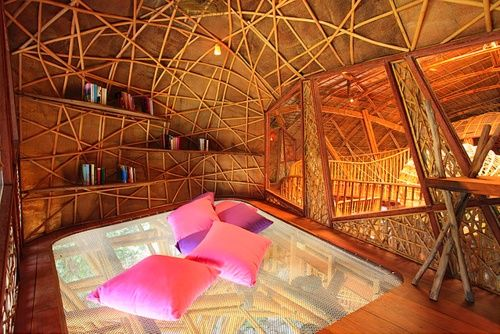 tree house  trampoline bed and circle hammock swing   favorite places  tree house  trampoline bed and circle hammock swing   favorite      rh   pinterest