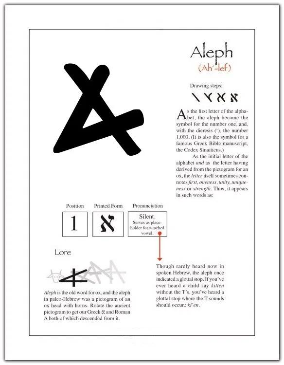 aleph ox Google Search Hebrew language words, Hebrew