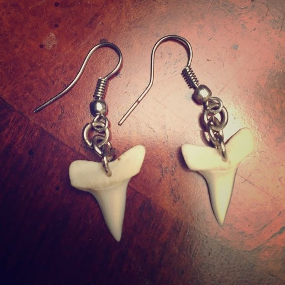 Real Shark Tooth Earrings Teeth From South Africa Jewelry