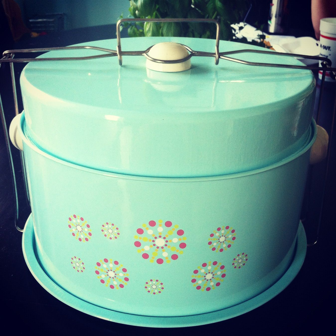 Dining room cupcake and cake carrier collapsible
