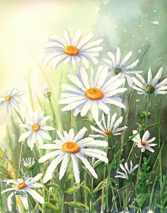 Daisy Days In 2020 Kuh Zeichnung Zeichnungen Tulpen