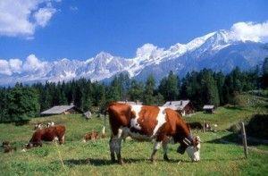 Les Houches Les Houches Les Houches, #France - #Travel Guide