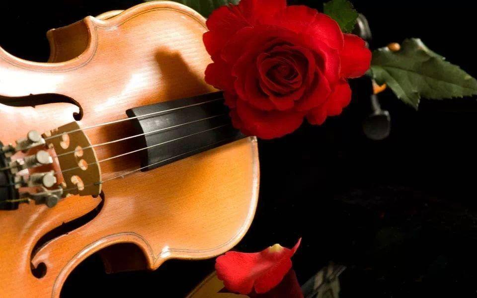 Pin De Rhayssa Bastos Em Mensagens Interessantes Violino Boa