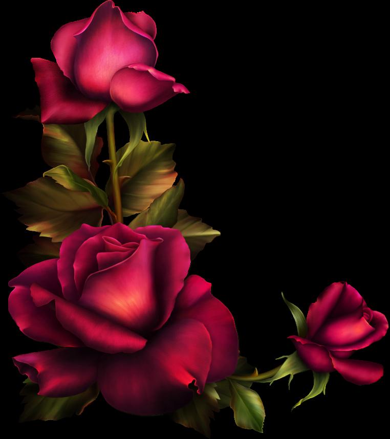 Pin de Gea de Raad em Flowers em 2020 Estampas florais