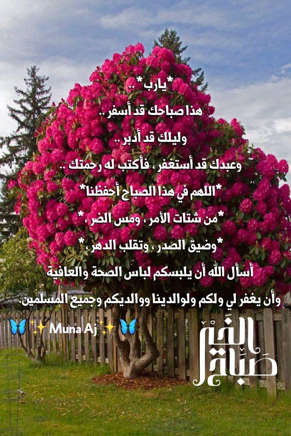 Pin By Queen Roses On صباح ومساء الخير اقتباسات جميله Islamic Love Quotes Romantic Love Quotes Islamic Wallpaper