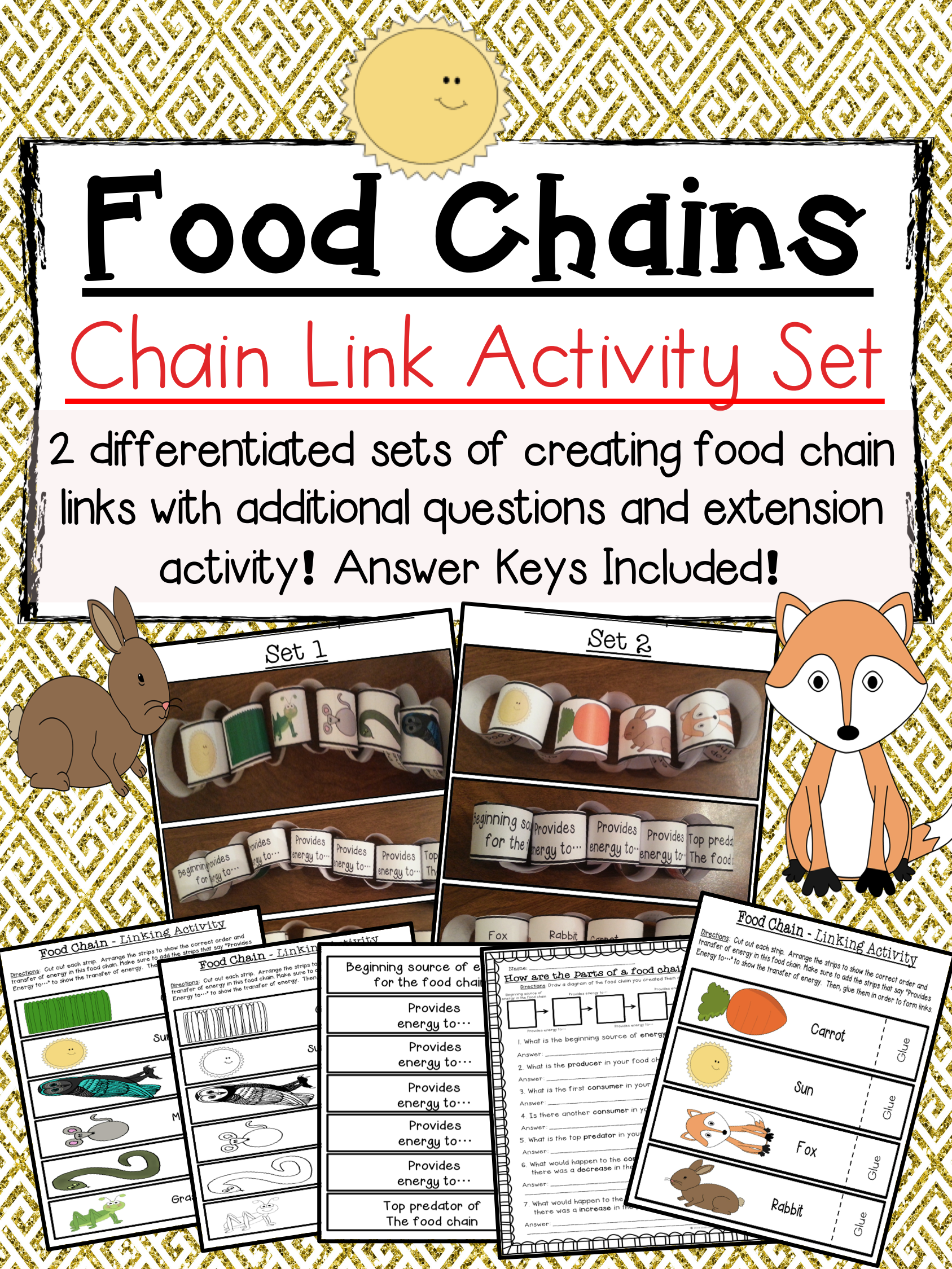 Food Chain Links Activity Set   Science lessons ...