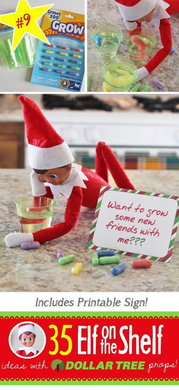 Funny Elf On The Shelf Ideas Humor _ Funny Elf On The Shelf Ideas