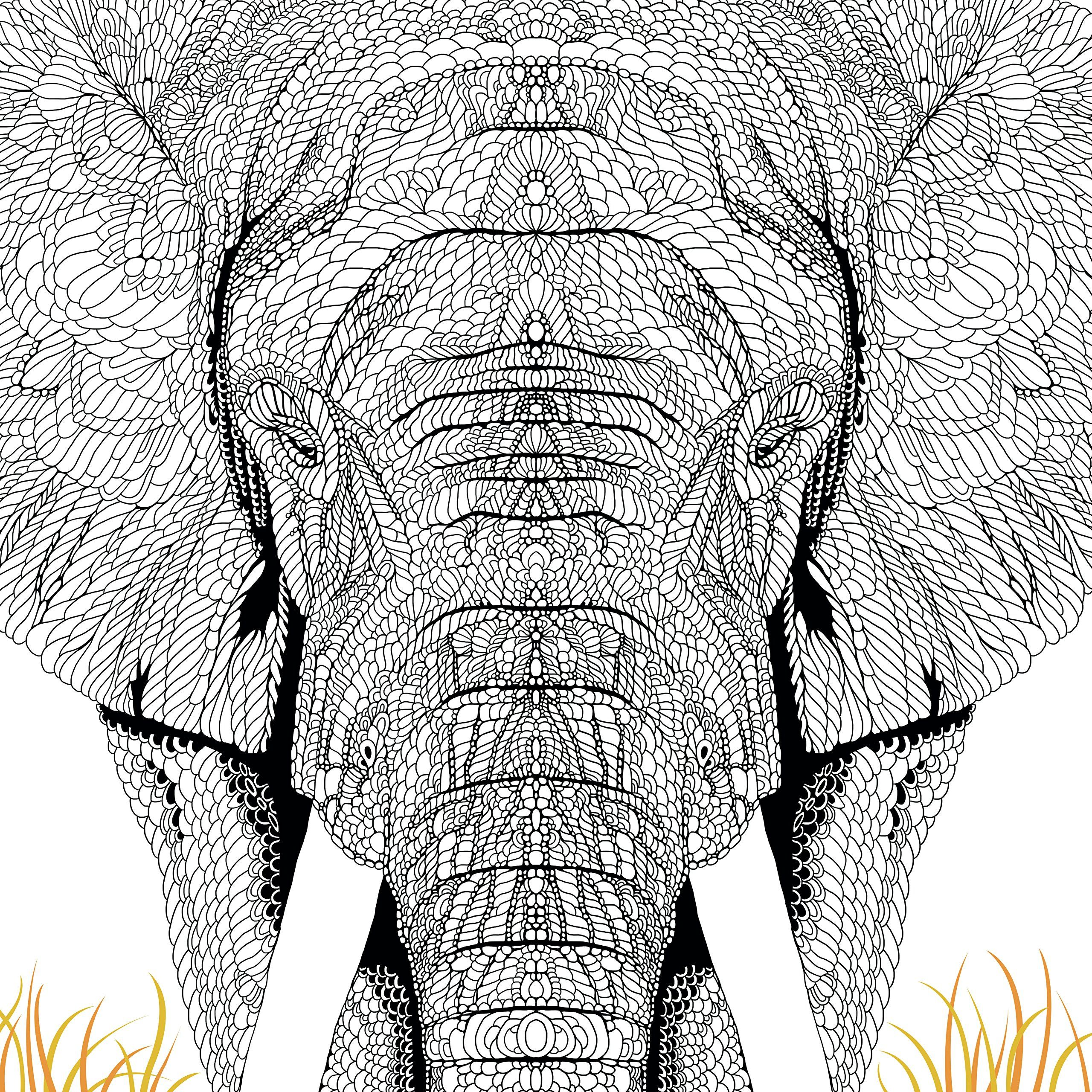 Mandala coloring pages amazon - The Menagerie Animal Portraits To Colour Amazon Co Uk Richard Merritt Mandala Coloringcolouring Pagescoloring