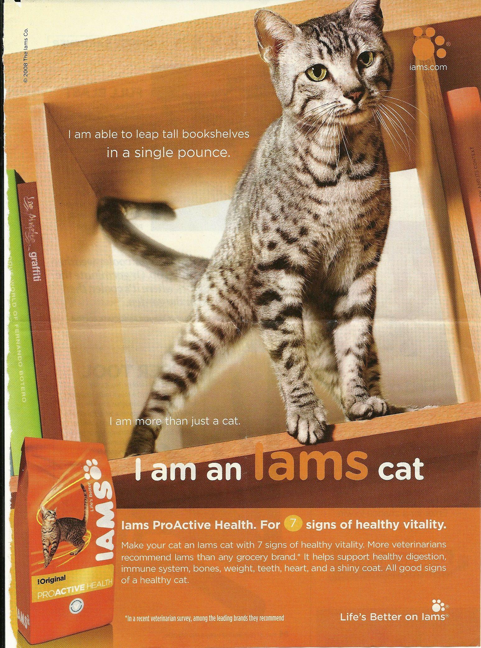 Cat Food Advert Cat Food Cats Tabby