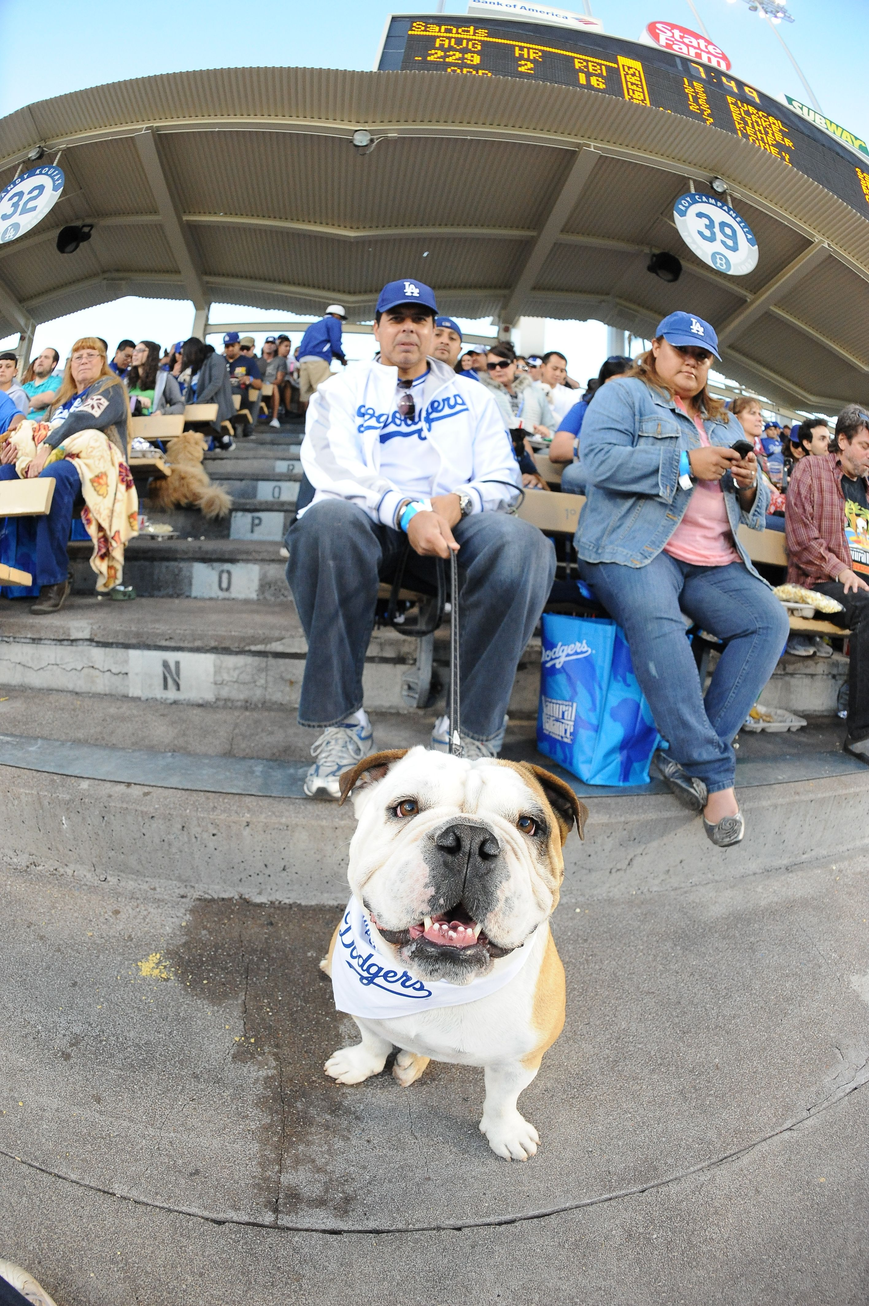 Dodgerdawg My Style Dodgers Baseball Dodger Stadium Dodgers