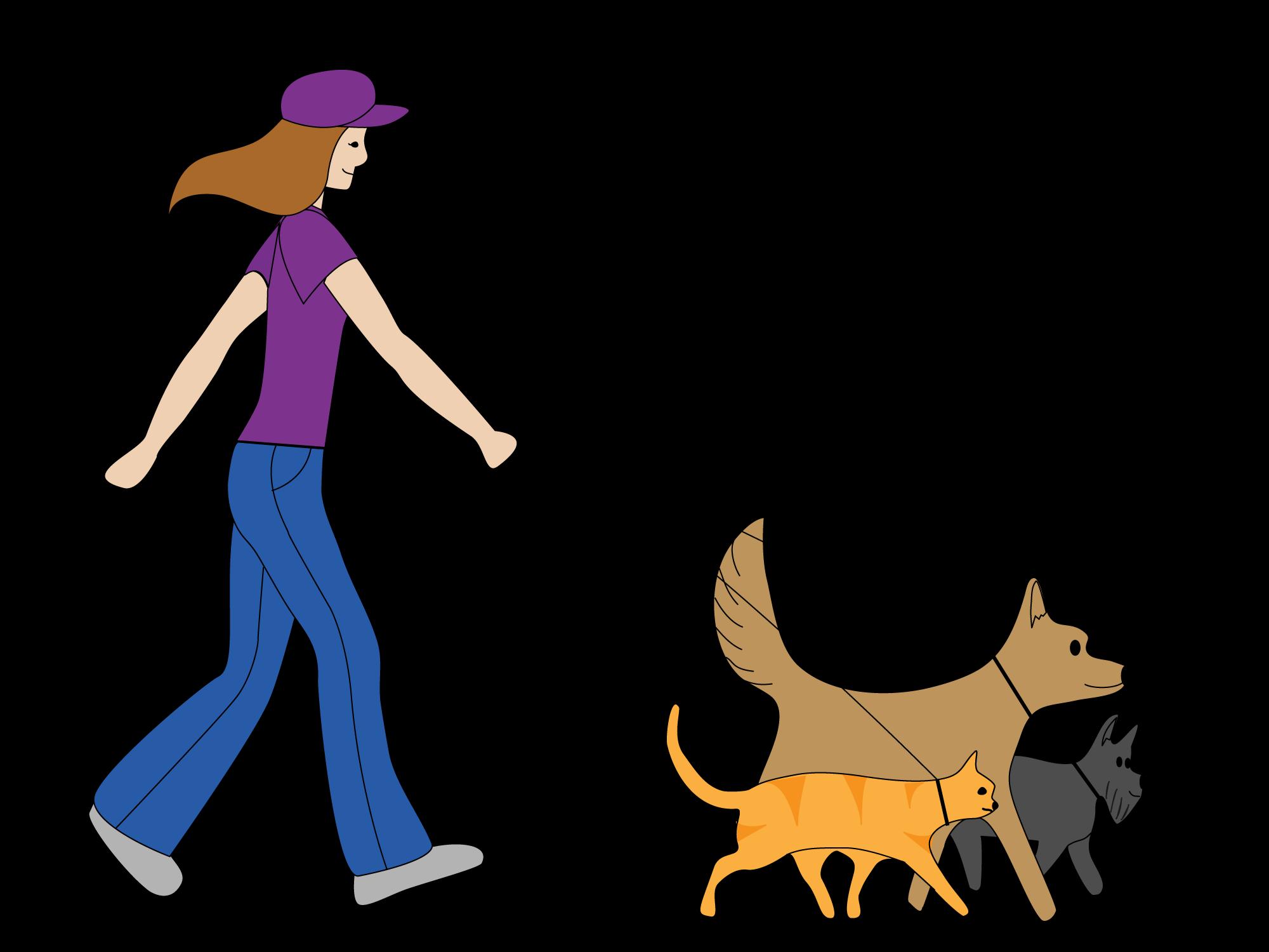 Ormond Beach Dog Walking Perros, Tarjetas