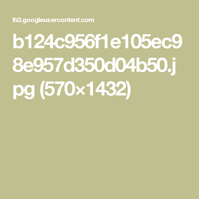 b124c956f1e105ec98e957d350d04b50.jpg (570×1432)