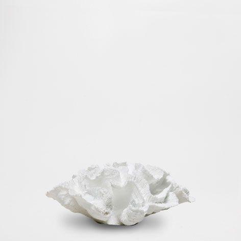 DEKO-KORALLE - Dekoration - New Collection | Zara Home Deutschland