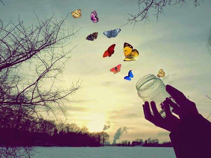 El Arpa Mágica: Mariposas